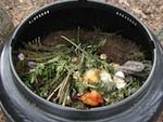 composting-input2