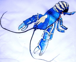Blue Lobster Dress | Right Side | 3 Hours Past